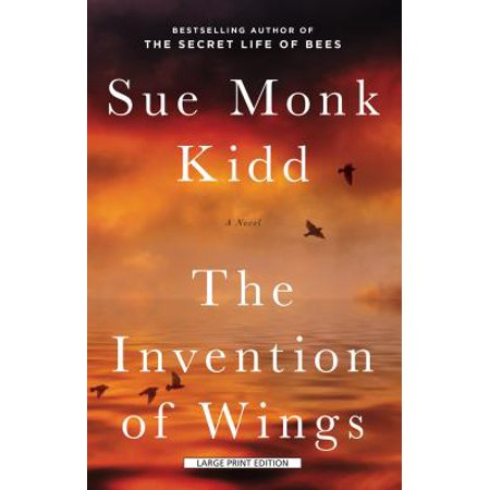 The Invention of Wings (10 Best Inventions Of All Time)