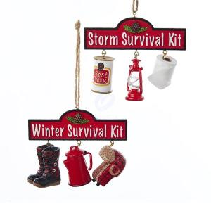 Click here to buy 1 Set 2 Assorted Winter and Storm Survival Kit Resin Christmas Ornaments by Kurt Adler.