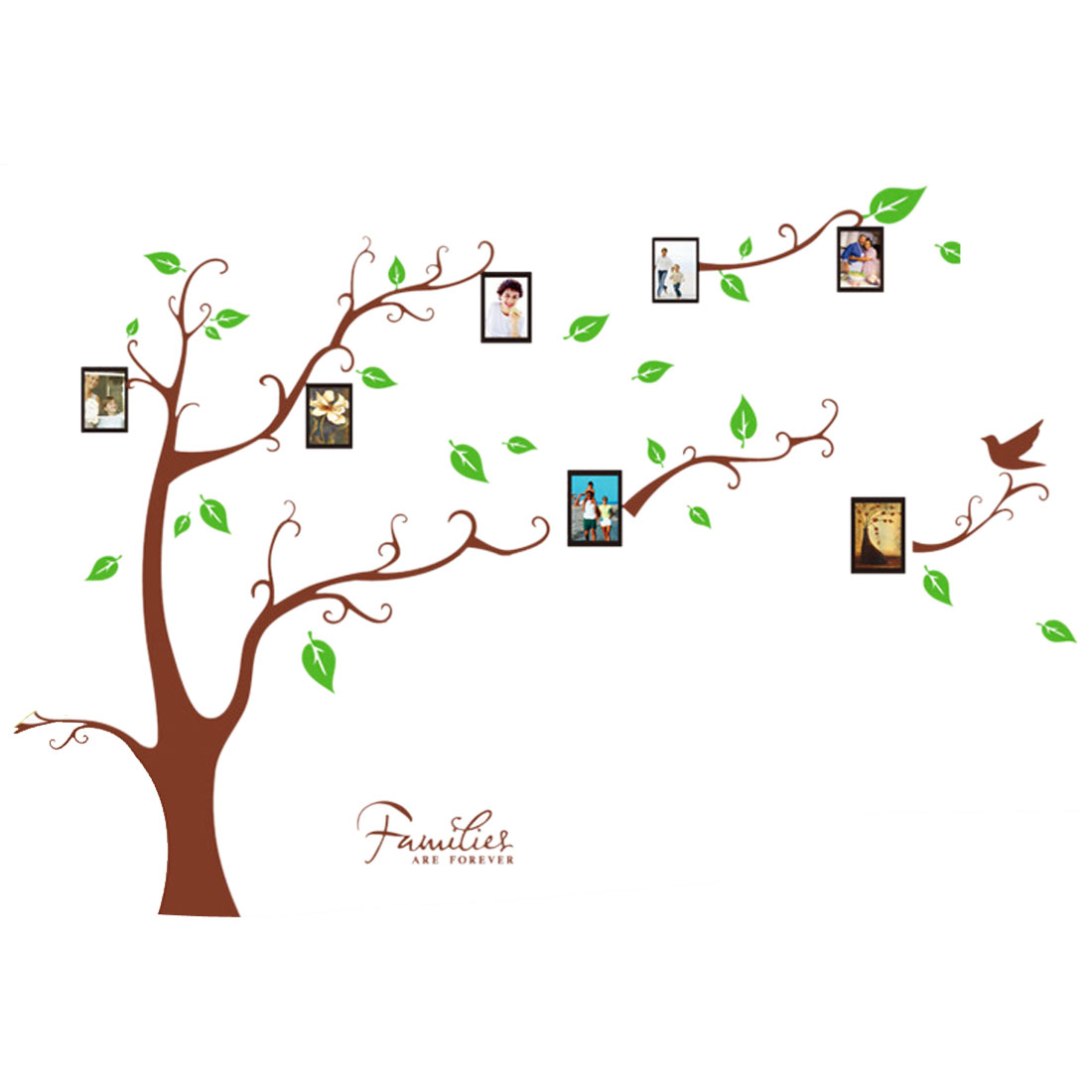 Photo Tree  PVC Water Resistant Wall Sticker Decal Wallpaper 90 x 60cm