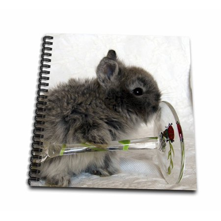 Glass Bunny - 3dRose Lionhead Bunny and Wine Glass - Mini Notepad, 4 by 4-inch