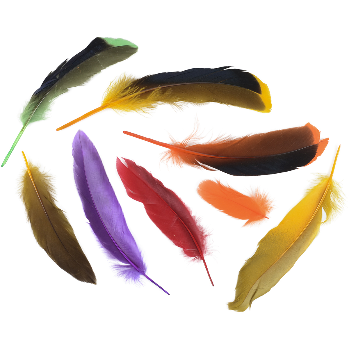 Duck Satinettes Feathers .05oz-Tropical Dyed Over Natural