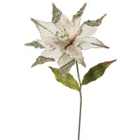 "Vickerman 26"" Champagne Poinsettia, 12"" Flower 3/B"