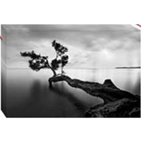 Tree Over Lake Black and White Canvas Wall Art, 40\