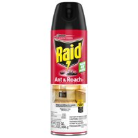Raid Ant & Roach Killer 26, Fragrance Free, 17.5 oz