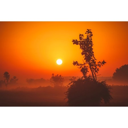 LAMINATED POSTER Sunrise Landscape Dawn Scenic Morning Silhouettes Poster Print 24 x 36