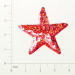 "Expo Int'l 4 1/2"" Prism Star Sequin Applique"