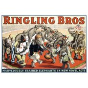 "ArteHouse Fine Art Print ""Ringling Brothers Elephant Circus"", Unmounted Cotton Canvas, 44"" x 60"""
