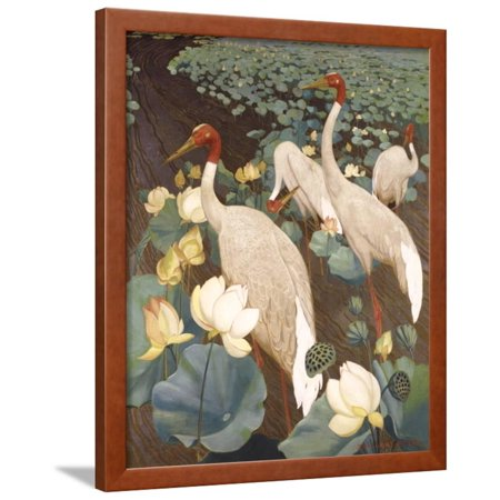 Indian Sarus Cranes on Gold Leaf Framed Print Wall Art By Jesse Arms -
