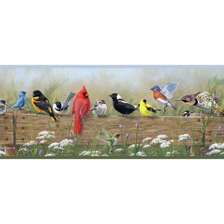 Brewster Home Fashions Borders by Chesapeake Clarence Songbird Menagerie Portrait 15' x 6'' Bird 3D Embossed Border Wallpaper](Tweety Bird Halloween Wallpaper)