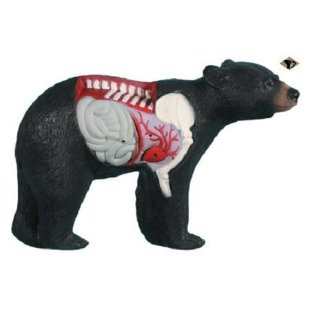 Rinehart Targets 30511 Anatomy Bear Archery Shot Placement Training Target (Bear Target)