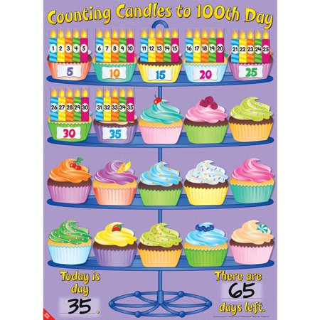 Counting Candles To 100th Day Poster And Magnets - Magnet Kits