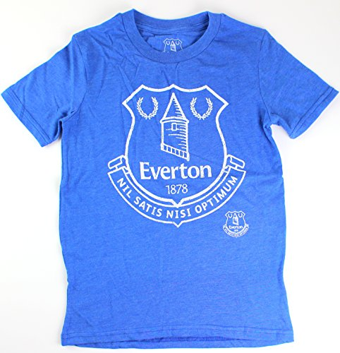 Everton BPL Football Club Blue Cotton Blend Soccer Adidas Youth Shirt (small)