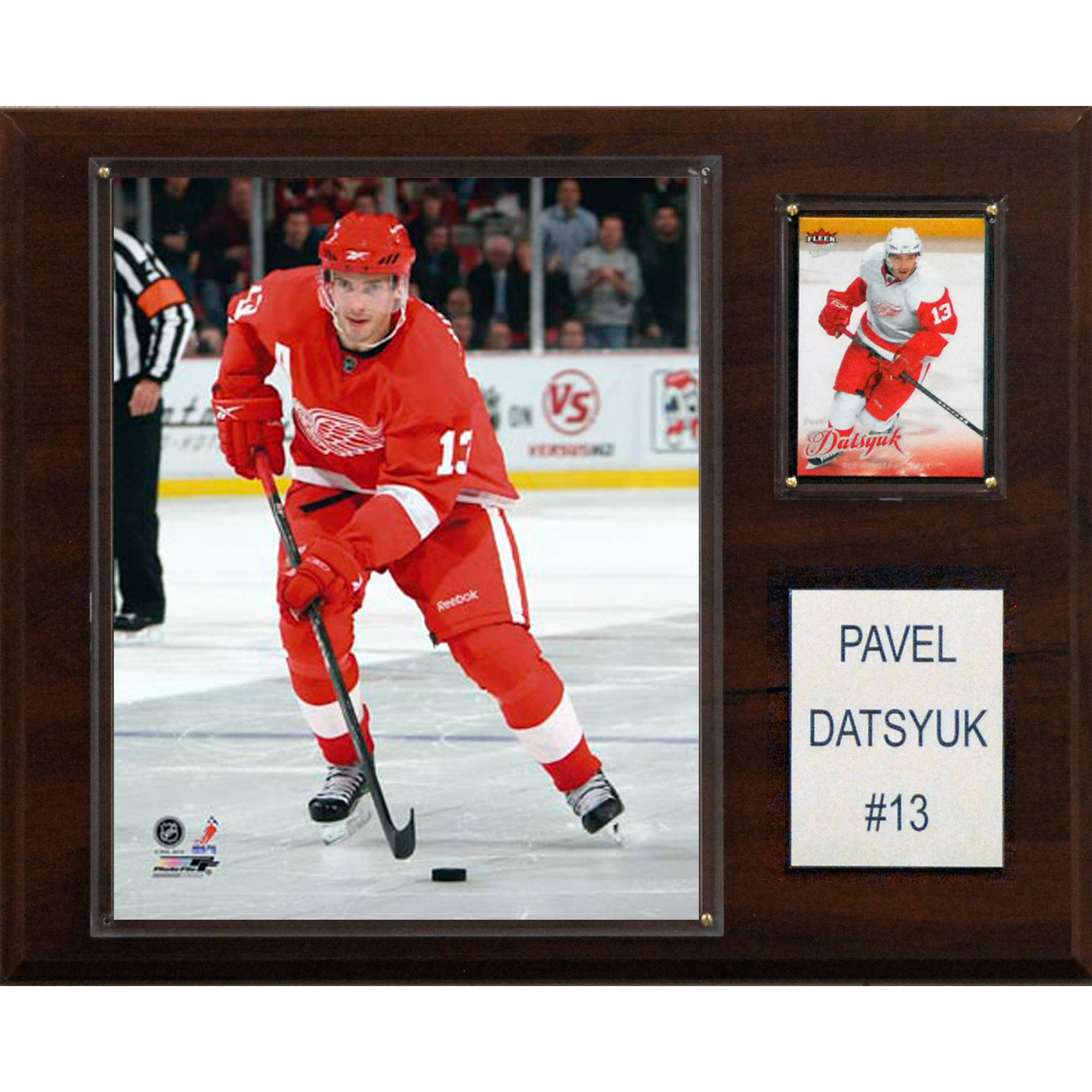 C&I Collectables NHL 12x15 Pavel Datsyuk Detroit Red Wings Player Plaque