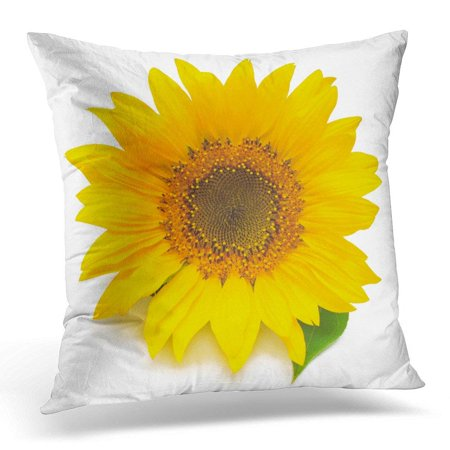 USART Orange Sun Flower of Sunflower White Seeds and Oil Flat Lay Top View Green Agriculture Throw Pillow Case Pillow Cover Sofa Home Decor 16x16 Inches ()