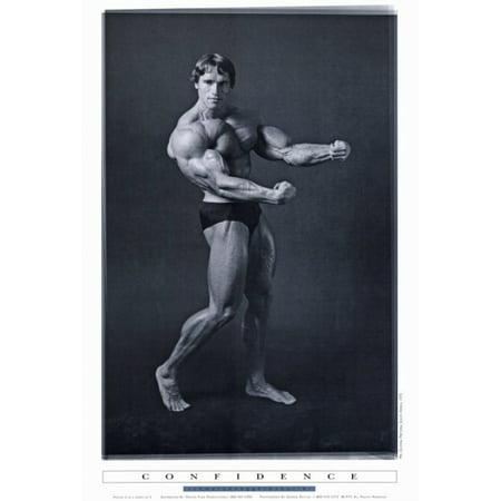 Arnold Schwarzenegger Movie Poster Print  27 X 40