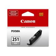 Canon 6517B001 (CLI-251) ChromaLife100+ Ink, Gray