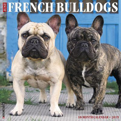 (Just French Bulldogs 2019 Wall Calendar (Dog Breed Calendar) (Other))