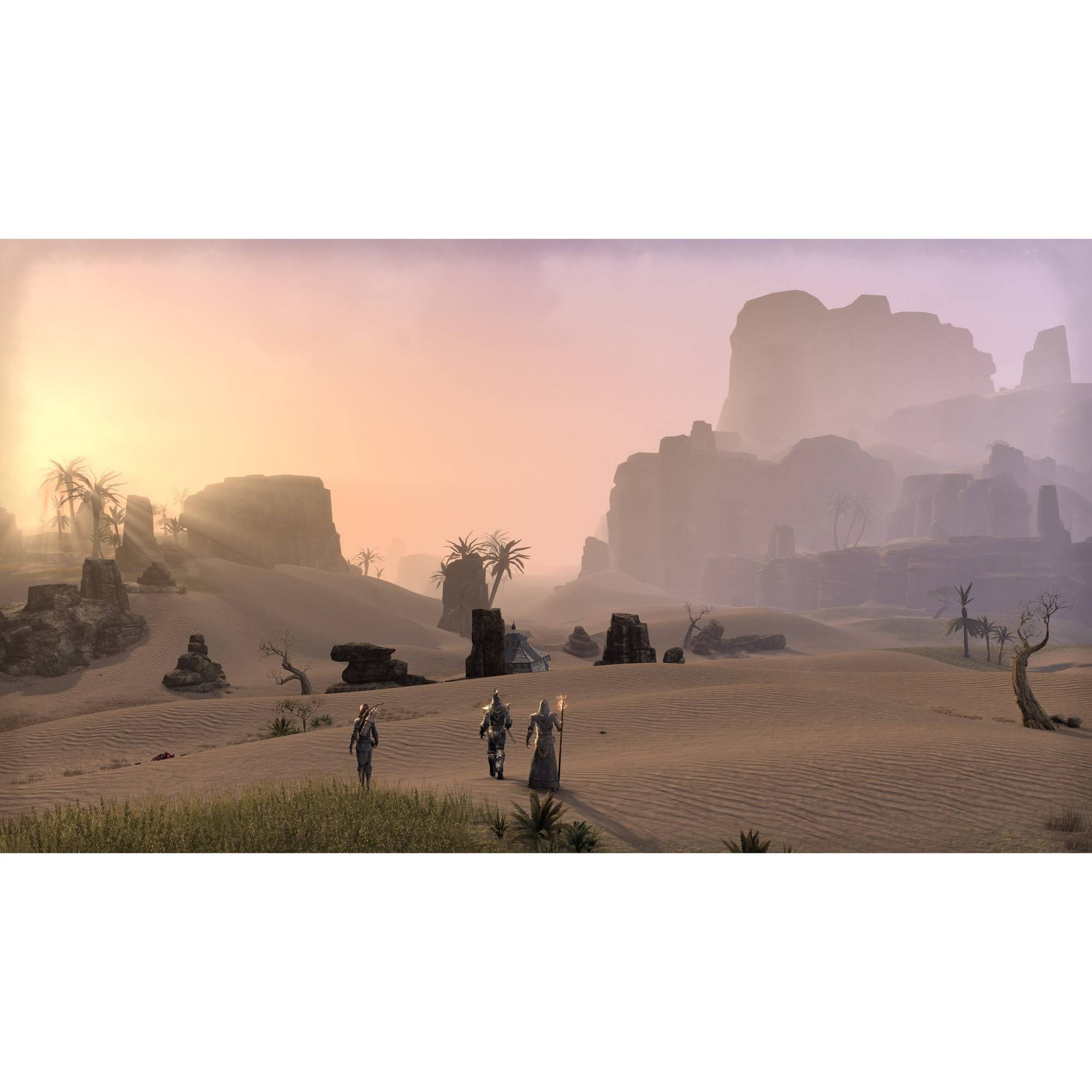 Bethesda Softworks The Elder Scrolls Online: Tamriel