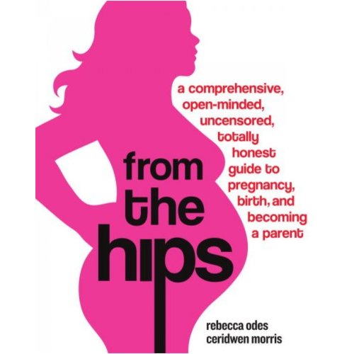 From the Hips: A Comprehensive, Open-minded, Uncensored, Totally Honest Guide to Pregnancy, Birth, and Becoming a Parent