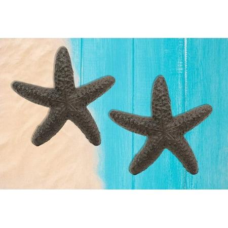 Diy Nautical Decor (Ebros Cast Iron Ocean Coral Sea Star Shell Starfish Decorative Accent Statue in Rustic Bronze Finish 4.5