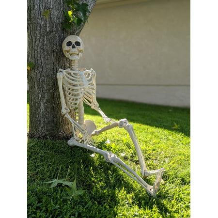 Way to Celebrate Halloween Hanging Posable Skeleton Decoration, 5