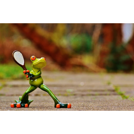 Tennis Frog (Canvas Print Sweet Fun Tennis Cute Frog Fig Funny Stretched Canvas 10 x)