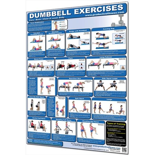 Productive Fitness CDLL Dumbbell Core, Back, Chest and Lower Body - Laminated