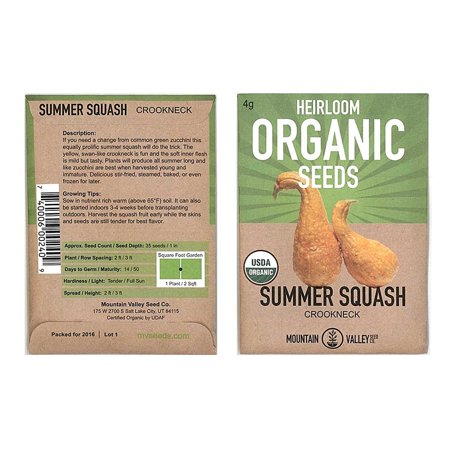 Crookneck Summer Squash Garden Seeds - 4 g Packet - Organic, Heirloom, Non-GMO - Vegetable Gardening Seed, Squash Seeds - Summer - Crookneck .., By Mountain Valley Seed Company Ship from (Best Organic Non Gmo Seed Companies)
