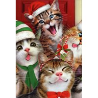 Nobleworks Cats Making Silly Faces Howard Robinson Box of 12 Humorous / Funny Christmas Cards