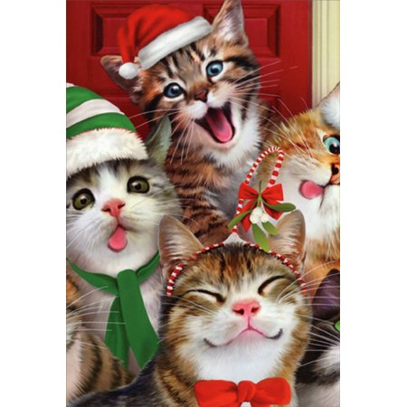 Nobleworks Cats Making Silly Faces Howard Robinson Humorous / Funny Christmas Card