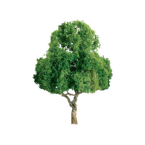 "Pro Tree, Deciduous 1.5"" (4) Multi-Colored"