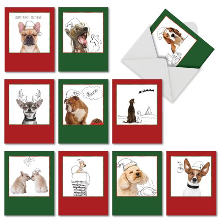 M6582XSB HOLIDAY DOGS & DOODLES' 10 Assorted Seasons Greetings Cards with Envelopes by The Best Card