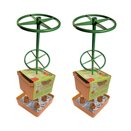 Hydrofarm Self Watering Tomato Tree Planter with 3