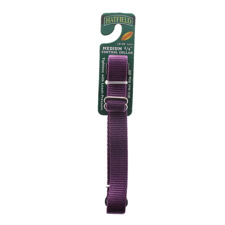 Hatfield 3/4 X 12-16 Medium Control Collar, Purple - Hatfield Halloween