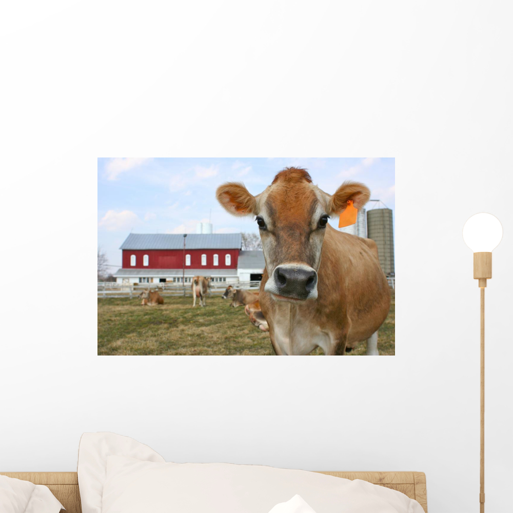 Jersey Cow Pasture Wall Mural by Wallmonkeys Peel and Stick Graphic (18 in W x 12 in H) WM241011