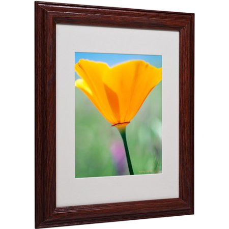 "Trademark Fine Art ""California Poppy Closeup"" Matted Framed Canvas Art by Kathy Yates"