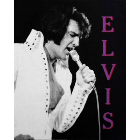 Elvis Presley in Concert Hawaii 1970 Poster Print (16 x 20)