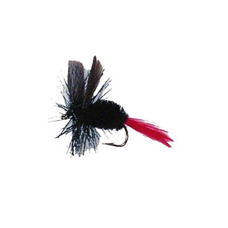 Betts Dry Fly Pro Sz12 12 pack of 2,