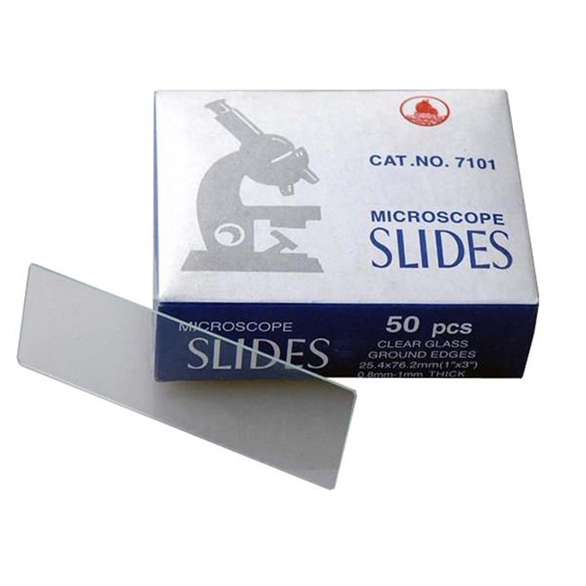 AmScope 50 Blank Microscope Slides with Ground Edges
