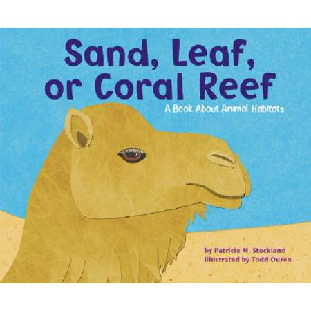 Sand, Leaf, or Coral Reef : A Book about Animal (Bubble Coral Animals)