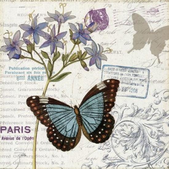 Papillon Tales II Poster Print by Pela Design (18 x 18)