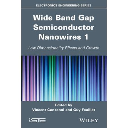 - Wide Band Gap Semiconductor Nanowires 1 - eBook