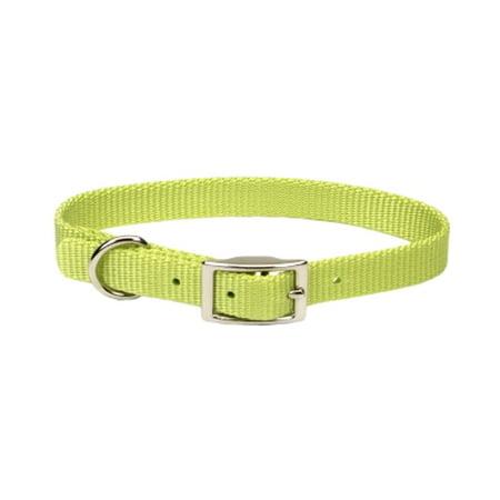 Coastal Pet Products  Inc  401 14 Lim 5 8 Nyl Web Collar