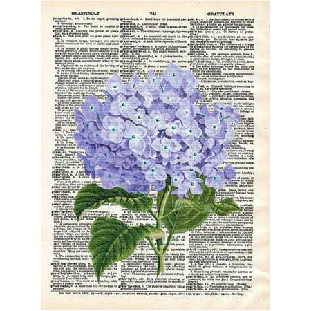 Art N Wordz Hydrangea Flower Original Dictionary Sheet Pop Art Wall Or Desk Art Print Poster