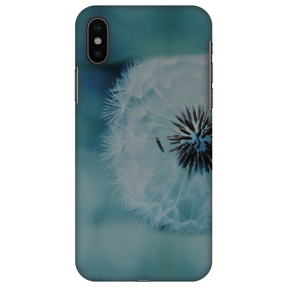 iPhone X Case - Dandelion Close By, Hard Plastic Back Cover. Slim Profile Cute Printed Designer Snap on Case with Screen Cleaning Kit