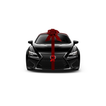 Giant Metallic Red Car Bow Ribbon New Car Gift Wrap Kit Decoration Christmas Set