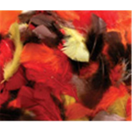 Assrt. Quill Feathers Fall Color