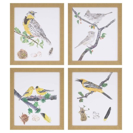 - Paragon Birds Framed Wall Art - Set of 4