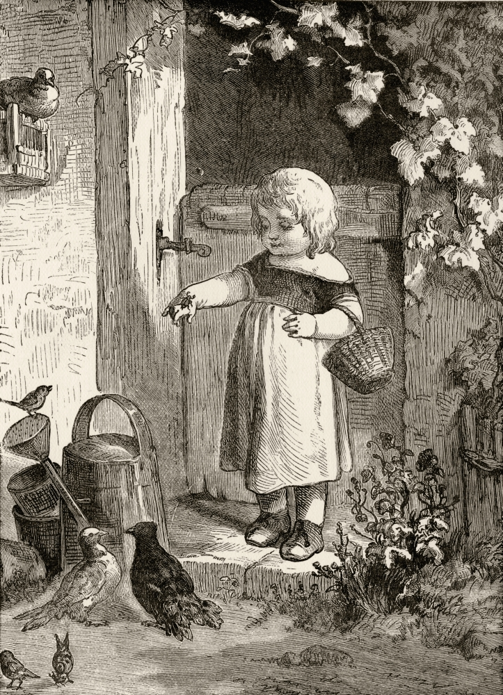 Example Of 19Th Century Childrens Book Illustration Little Girl With Insect On Her Hand In Farmyard Setting From Picture... by Design Pics