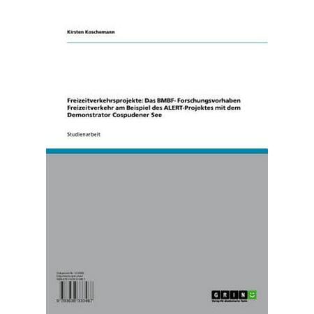 Freizeitverkehrsprojekte: Das BMBF- Forschungsvorhaben Freizeitverkehr am Beispiel des ALERT-Projektes mit dem Demonstrator Cospudener See - eBook